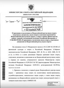 Киберспорт стал официальным видом спорта в России