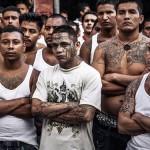 Банды Лос-Анджелеса — новый фильм про хаус на улицах «Города Ангелов»