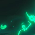 Что показали в первом тизере The Legend of Zelda: Breath of the Wild 2 — разбор трейлера следующей Зельды с E3 2019
