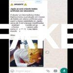 Пользователей бразильского WhatsApp напугали рассылкой о докторе Коджиме, создающем детей из пробирки