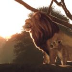 Слонята, львята и медвежата — симулятор идеального зоопарка Planet Zoo выходит 5 ноября