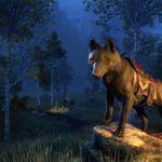 The Elder Scrolls Online — Получите бесплатного ездового волка