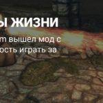 Новый мод добавил в Skyrim возможность играть за детей