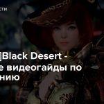 [Console]Black Desert — Короткие видеогайды по управлению