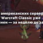 Один из американских серверов World of Warcraft Classic уже переполнен — за неделю до запуска