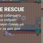Симулятор собачьего питомника To The Rescue собрал деньги на Kickstarter за два дня