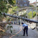 Обрушившийся на Японию мощный тайфун обесточил один из заводов по производству PlayStation 4