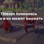 В Sea of Thieves появились питомцы и их может вырвать на палубу