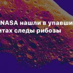Ученые NASA нашли в упавших метеоритах следы рибозы