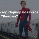Слух: Питер Паркер появится в сиквеле «Венома»