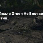 В сурвайвале Green Hell появился кооператив