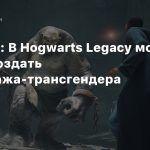 Шрайер: В Hogwarts Legacy можно будет создать персонажа-трансгендера