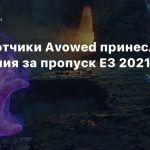 Разработчики Avowed принесли извинения за пропуск E3 2021