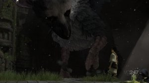 Новые скриншоты The Last Guardian