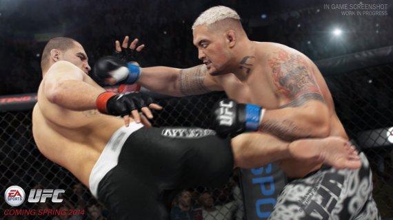 Новые скриншоты EA Sports UFC (Обновлено)